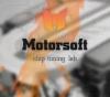 Чип тюнинг от Motorsoft